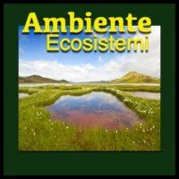 Ambiente Ecosistemi